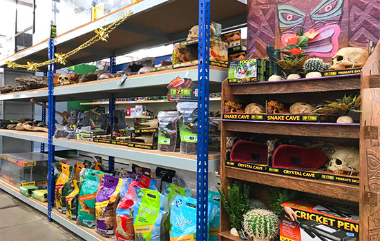Tropical fish Ipswich snakes and reptiles fish food