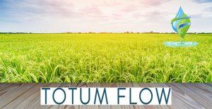 Totumflow water softener Ipswich water filtration system