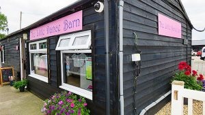 The-Little-Dance-Barn-Dancing-Clothes-Shoes-Accessories-Ipswich