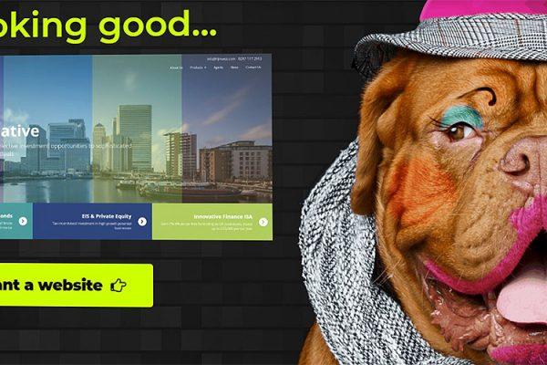 Nash-Web-Developement-Digitial-Marketing-Photography-Content-Writing-Services-Essex.